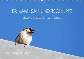 Er kam, sah und tschilpte – Spatzengeschichten vom Balkon (Wandkalender 2021 DIN A2 quer) von Hanke,  Gabriele