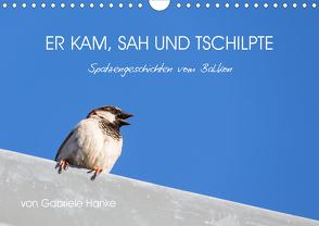 Er kam, sah und tschilpte – Spatzengeschichten vom Balkon (Wandkalender 2021 DIN A4 quer) von Hanke,  Gabriele