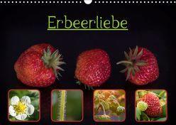 Erbeerliebe (Wandkalender 2019 DIN A3 quer) von Teßen,  Sonja