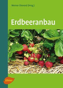 Erdbeeranbau von Dierend,  Prof. Dr. Werner, Jung,  Ralf, Keller,  Tilman, Krüger-Steden,  Dr. Erika, Linnemannstöns,  Ludger