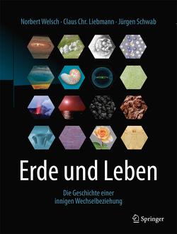 Erde und Leben von Liebmann,  Claus Chr., Schwab,  Jürgen, Welsch,  Norbert