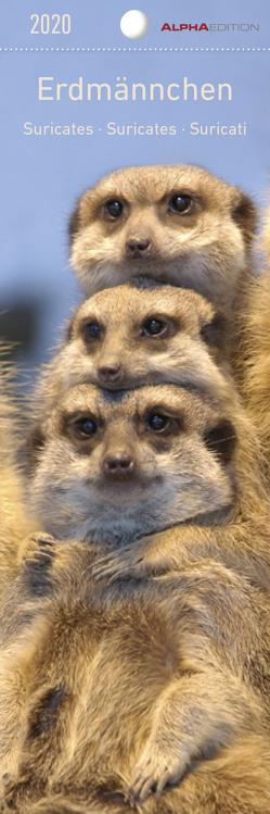 Erdmännchen 2020 – Lesezeichenkalender (5,5 x 16,5) – Meerkats – Tierkalender – Gadget – Lesehilfe – Geschenkidee von ALPHA EDITION