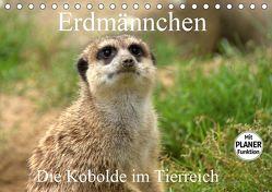 Erdmännchen – Die Kobolde im Tierreich (Tischkalender 2019 DIN A5 quer) von Klatt,  Arno