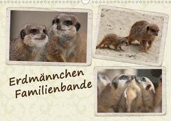 Erdmännchen Familienbande (Wandkalender 2021 DIN A3 quer) von Chawera