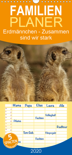 Erdmännchen – Zusammen sind wir stark – Familienplaner hoch (Wandkalender 2020 , 21 cm x 45 cm, hoch) von Hebgen,  Peter
