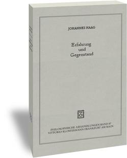 Erfahrung und Gegenstand von Haag,  Johannes