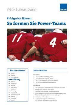 Erfolgreich führen: So formen Sie Power-Teams von Rado Läubli,  Sue, Rado,  Rolf P.