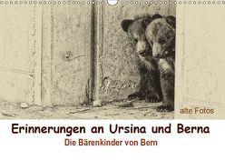 Erinnerungen an Ursina und Berna. Die Bärenkinder von Bern. Alte Fotos (Wandkalender 2019 DIN A3 quer) von Michel / CH,  Susan