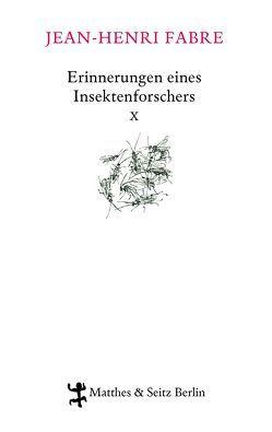 Erinnerungen eines Insektenforschers X von Fabre,  Jean-Henri, Koch,  Friedrich, Kunzmann,  Ulrich, Lipecky,  Heide, Thanhäuser,  Christian
