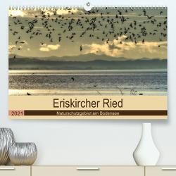Eriskircher Ried – Naturschutzgebiet am Bodensee (Premium, hochwertiger DIN A2 Wandkalender 2021, Kunstdruck in Hochglanz) von Brinker,  Sabine