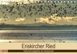 Eriskircher Ried – Naturschutzgebiet am Bodensee (Tischkalender 2019 DIN A5 quer) von Brinker,  Sabine