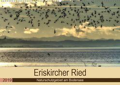 Eriskircher Ried – Naturschutzgebiet am Bodensee (Wandkalender 2019 DIN A2 quer) von Brinker,  Sabine