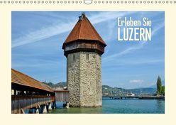 Erleben Sie LUZERN (CH – Version) (Wandkalender 2019 DIN A3 quer) von Viola,  Melanie