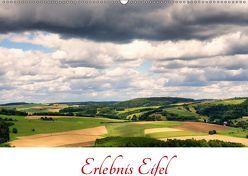 Erlebnis Eifel (Wandkalender 2019 DIN A2 quer) von Bücker,  Michael