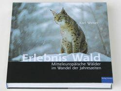 Erlebnis Wald von Weber,  Karl