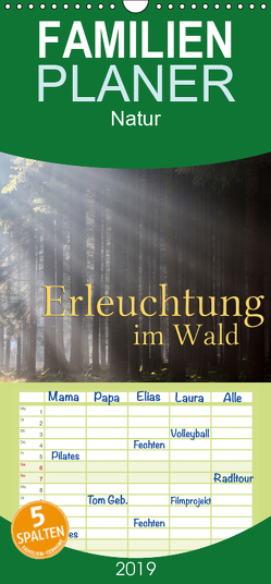 Erleuchtung im Wald – Familienplaner hoch (Wandkalender 2019 , 21 cm x 45 cm, hoch) von Cross,  Martina