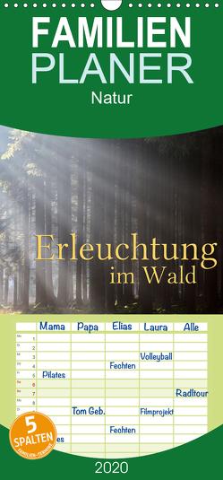 Erleuchtung im Wald – Familienplaner hoch (Wandkalender 2020 , 21 cm x 45 cm, hoch) von Cross,  Martina