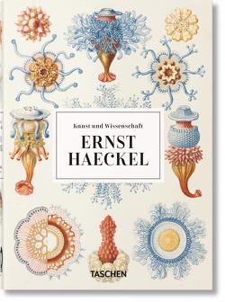 Ernst Haeckel. Kunst und Wissenschaft. 40th Anniversary Edition von Voss,  Julia, Willmann,  Rainer