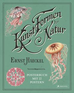 Ernst Haeckel: Kunstformen der Natur. Posterbuch mit 22 Postern von Uthoff,  Kira