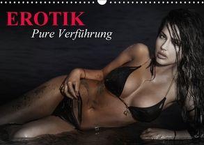 Erotik – Pure Verführung (Wandkalender 2018 DIN A3 quer) von Stanzer,  Elisabeth