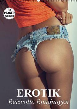 Erotik – Reizvolle Rundungen (Wandkalender 2019 DIN A2 hoch) von Stanzer,  Elisabeth