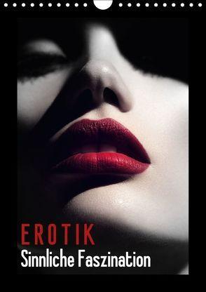 Erotik – Sinnliche Faszination (Wandkalender 2018 DIN A4 hoch) von Stanzer,  Elisabeth