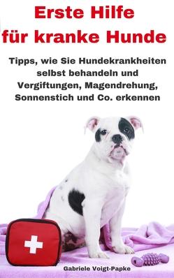Erste Hilfe für kranke Hunde von Voigt-Papke,  Gabriele