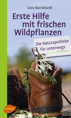 Erste Hilfe mit frischen Wildpflanzen von Burckhardt,  Coco
