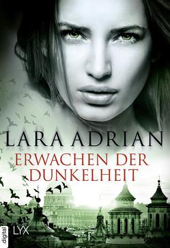 Erwachen der Dunkelheit von Adrian,  Lara
