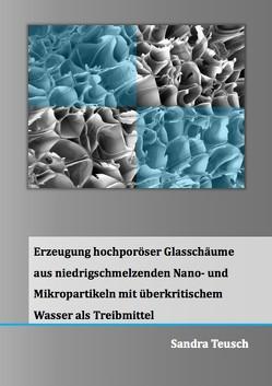 Erzeugung hochporöser Glasschäume aus niedrigschmelzenden Nano- und Mikropartikeln mit überkritischem Wasser als Treibmittel von Teusch,  Sandra