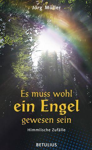 Es muss wohl ein Engel gewesen sein von Müller – Dr.,  Jörg