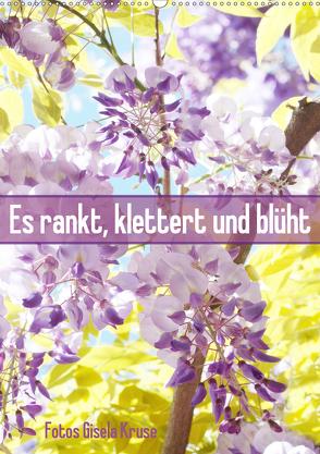Es rankt, klettert und blüht (Wandkalender 2020 DIN A2 hoch) von Kruse,  Gisela