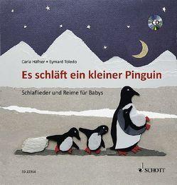 Es schläft ein kleiner Pinguin von Häfner,  Carla, Toledo,  Eymard