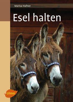 Esel halten von Hafner,  Marisa