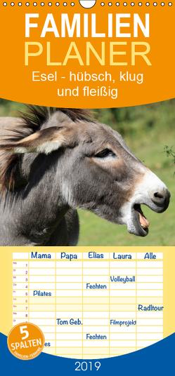 Esel – hübsch, klug und fleißig – Familienplaner hoch (Wandkalender 2019 , 21 cm x 45 cm, hoch) von Stanzer,  Elisabeth
