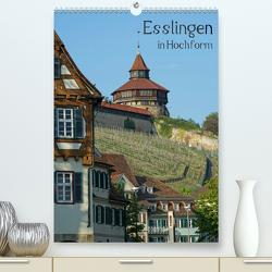 Esslingen in Hochform (Premium, hochwertiger DIN A2 Wandkalender 2021, Kunstdruck in Hochglanz) von Weber,  Philipp