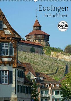 Esslingen in Hochform (Wandkalender 2019 DIN A2 hoch) von Weber,  Philipp