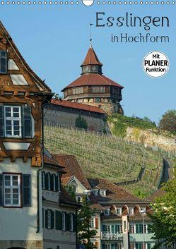 Esslingen in Hochform (Wandkalender 2019 DIN A3 hoch) von Weber,  Philipp