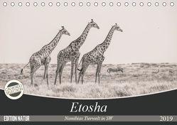 Etosha – Namibias Tierwelt in SW (Tischkalender 2019 DIN A5 quer) von Kohlem,  Arno