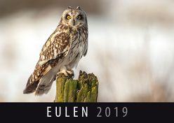 Eulen 2019 von Quelle & Meyer Verlag