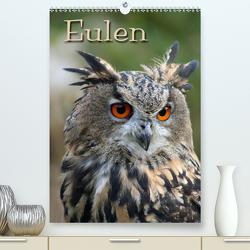 Eulen / CH-Version (Premium, hochwertiger DIN A2 Wandkalender 2020, Kunstdruck in Hochglanz) von / Martina Berg + Antje Lindert-Rottke,  Pferdografen.de