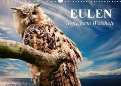 Eulen. Gefiederte Weisheit (Wandkalender 2019 DIN A3 quer) von Stanzer,  Elisabeth