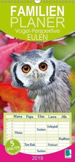 Eulen: Vogel-Perspektive (Wandkalender 2019 PRO_49_format hoch) von CALVENDO