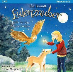 Eulenzauber (6). Hilfe für das kleine Fohlen von Brandt,  Ina, Morgenstern,  Friedel