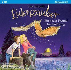 Eulenzauber (8). Ein neuer Freund für Goldwing von Brandt,  Ina, Morgenstern,  Friedel