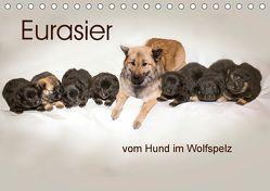 Eurasier, der Hund im Wolfspelz (Tischkalender 2018 DIN A5 quer) von Überall,  Peter