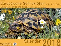 Europäische Schildkröten in der freien Natur