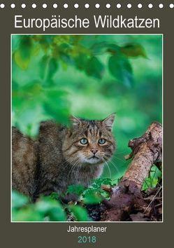Europäische Wildkatzen – Jahresplaner (Tischkalender 2018 DIN A5 hoch) von Webeler,  Janita