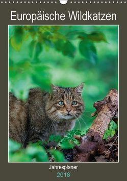 Europäische Wildkatzen – Jahresplaner (Wandkalender 2018 DIN A3 hoch) von Webeler,  Janita