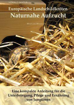 Europäische Landschildkröten Naturnahe Aufzucht von Wegehaupt,  Wolfgang